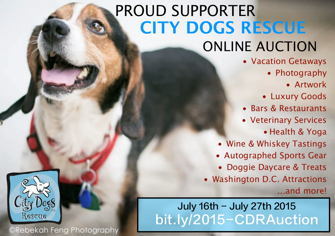 Proud supporter: City Dogs Rescue online auction flyer